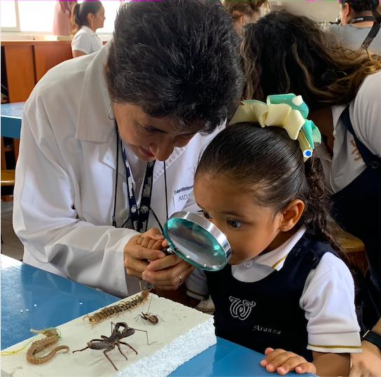 Blog-Imagen-como-funciona-bachillerato-internacional-preescolar-como-funciona-Colegio-Williams-Cuernavaca-Ago20-V1