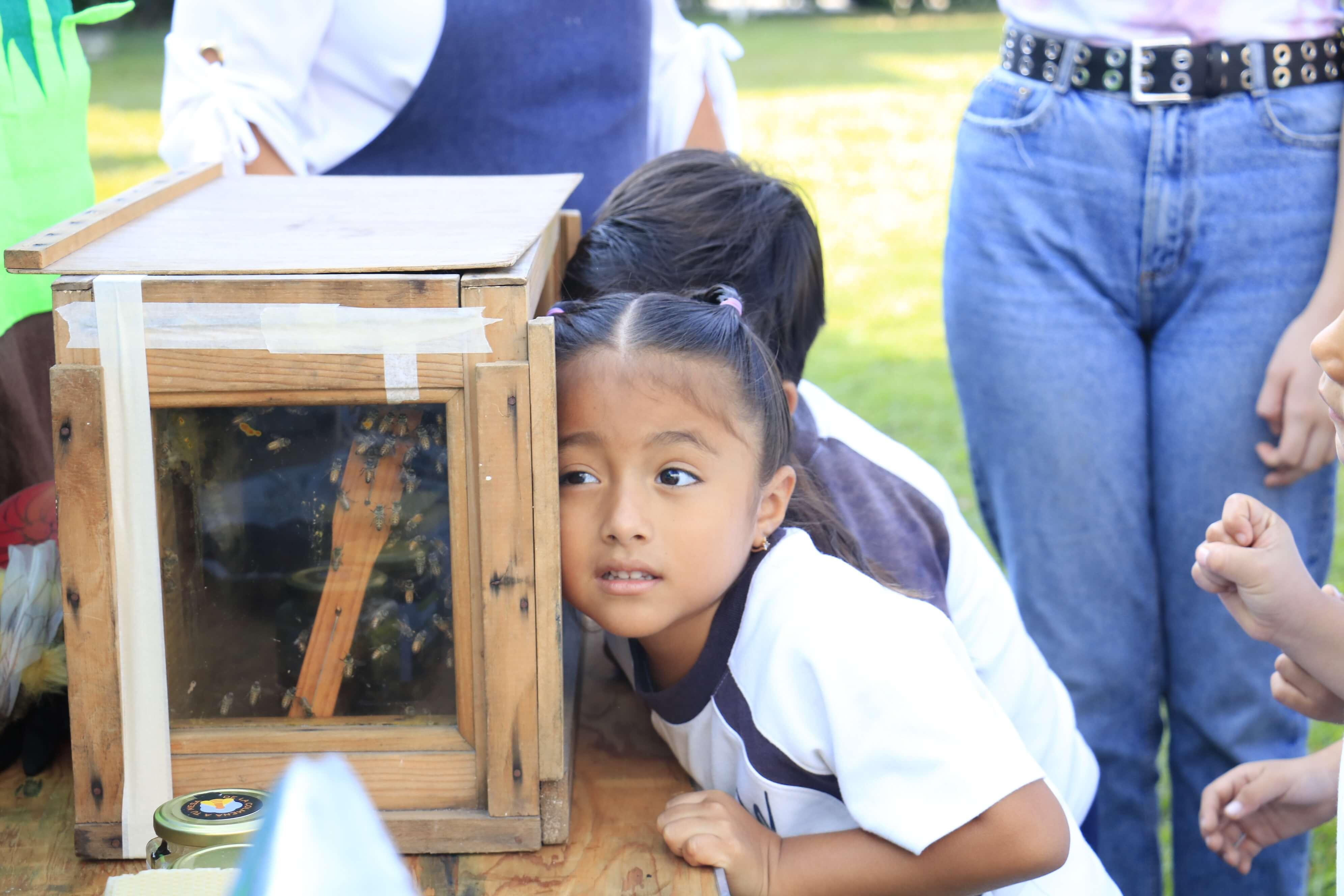 Blog-Imagen-como-funciona-bachillerato-internacional-preescolar-programa-pep-Colegio-Williams-Cuernavaca-Ago20-V1