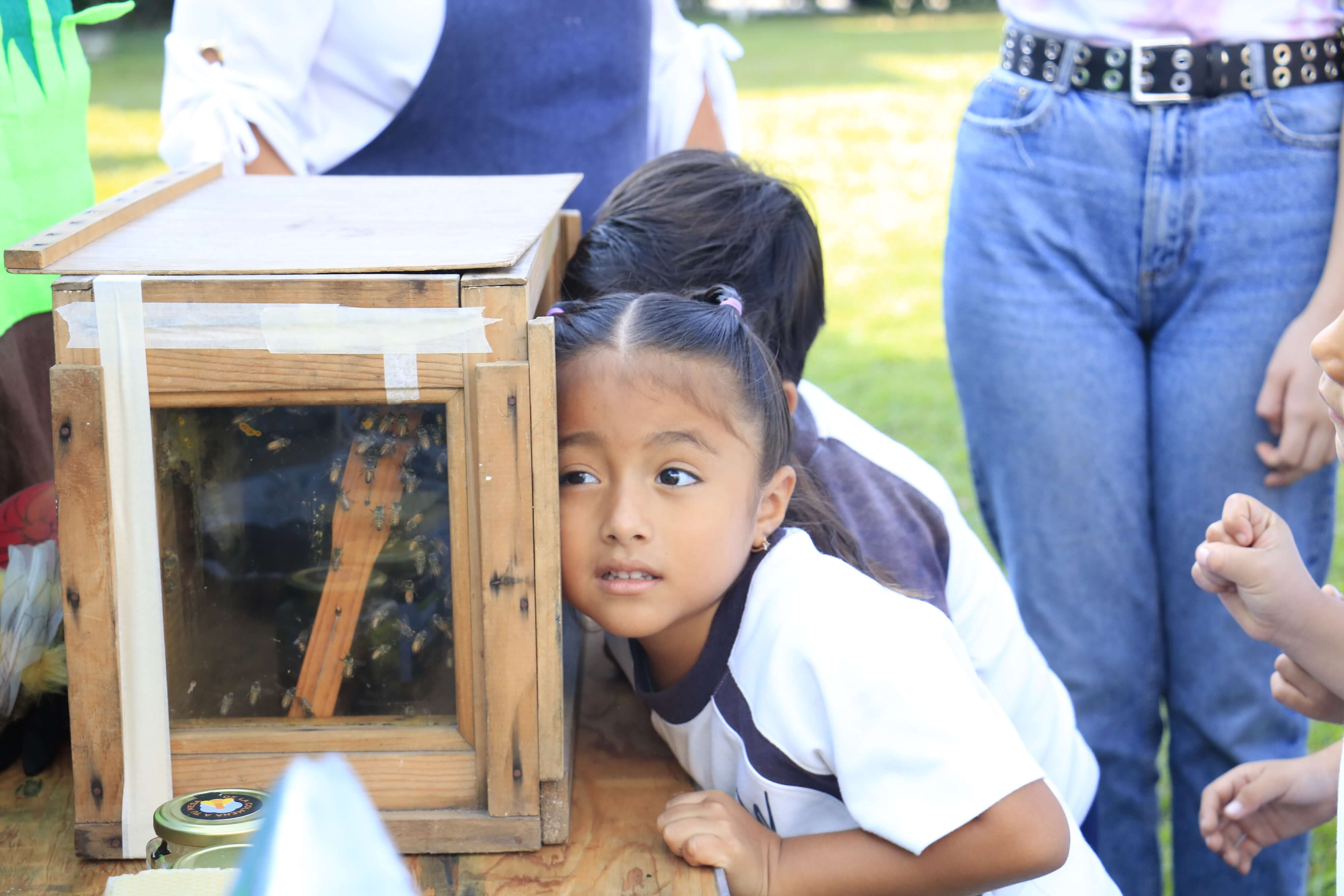 Blog-Imagen-habilidades-puede-desarrollar-hijo-desde-preescolar-pasion-por-aprender-Colegio-Williams-de-Cuernavaca-Oct