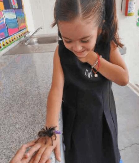Blog-Imagen-preescolar-aprender-jugando-mejor-forma-aprender-juego-orientado-Colegio-Williams-de-Cuernavaca-Nov20