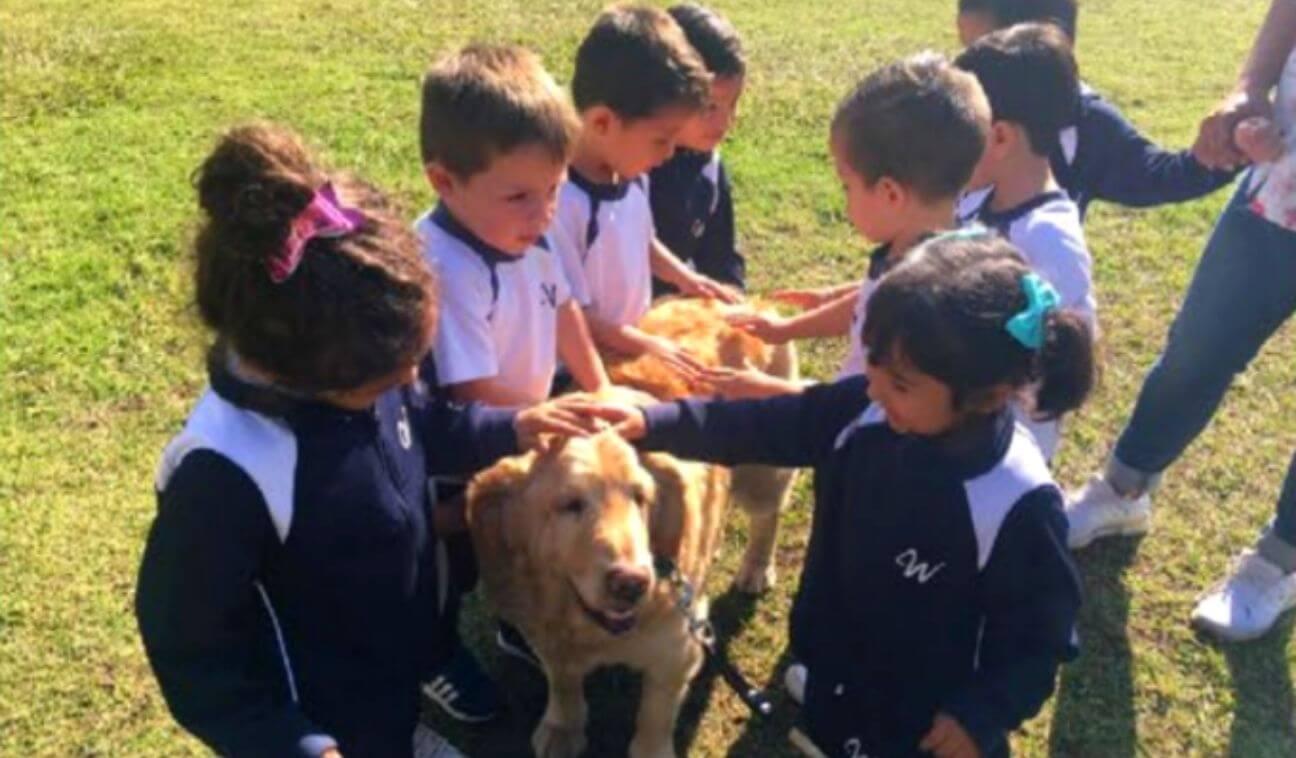 Aprender jugando, la mejor forma de aprender en Preescolar